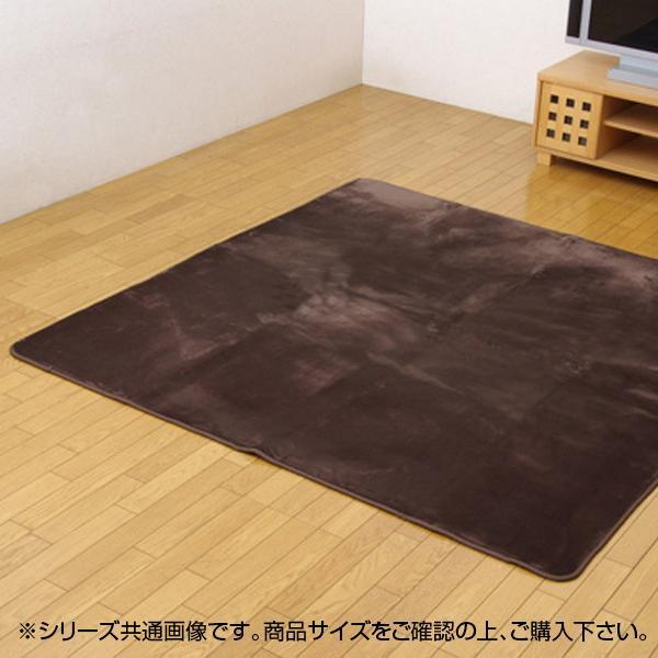 (同梱不可)撥水加工カーペット 『撥水リラCE』 ブラウン 200×250cm 3948179