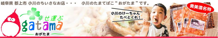 小川の玉手箱「おがたま」:田舎の特産品をお届けします。