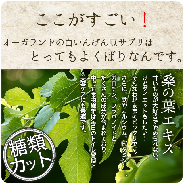 白いんげん ダイエット サプリ 約3ヶ月分  オーガランド 【M】  _JD 【Msp10】