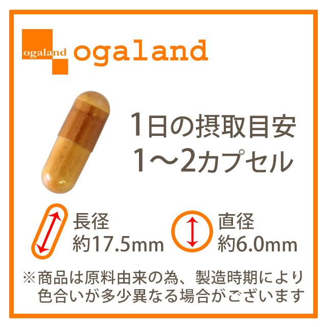 【商品名称】日本纳豆胶囊食品(优惠装)【内含量】313mg×90粒