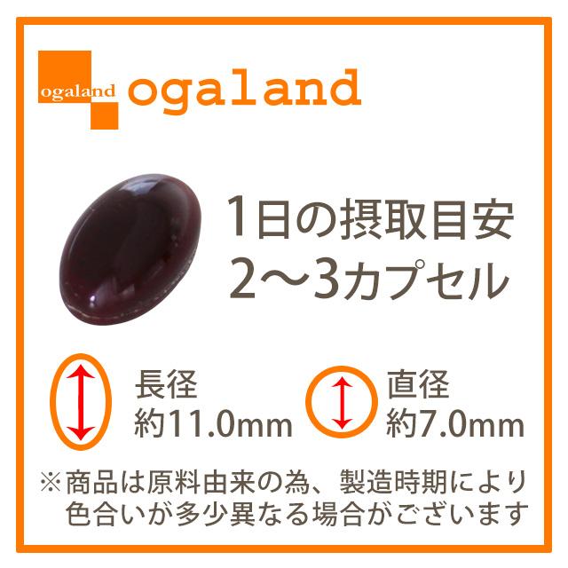 【商品名称】白藜芦醇和番茄红素(3包组)   【内含量】345mg×60粒×3包