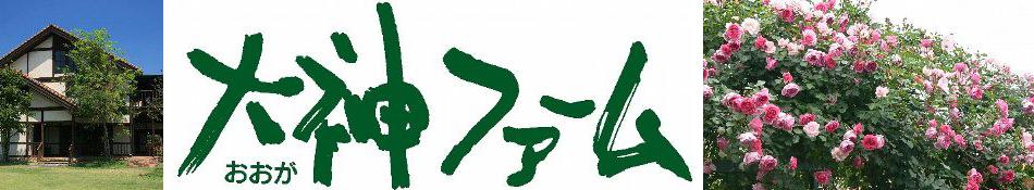 大神ファーム:イングリッシュローズやオールドローズなどのバラ苗やハーブ苗を販売