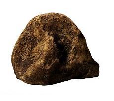 FRP製庭石 1D