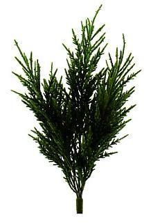 人工植物 下草もみブッシュ(屋外対応用)