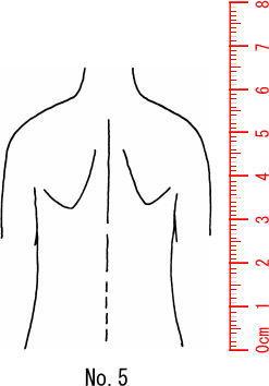スタンプ ゴム印 学校 病院 カルテ 保険 驚きの価格が実現 整体 人体図スタンプ 上全身 送料無料 激安 お買い得 キ゛フト 背面 05 医療用