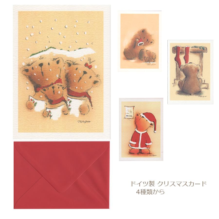 最安値 メール便対応 グリーティングカード 封筒付き メッセージカード 花のカード 電報 新品未使用 クリスマスカード SBZcou1208 サンタさんお花と一緒に贈れます