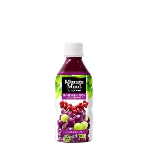 【送料無料】【2ケースセット】ミニッツメイドカシス&グレープ350mlPET 48本 果汁飲料フレーバー  果汁ジュース 箱 ペットボトルケース