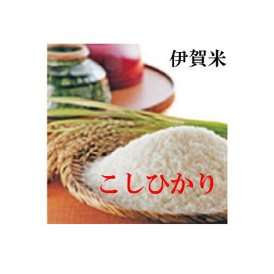 令和元年 新米 お米 10kg 送料無料 ミエ イガ コシヒカリ 玄米 白米 令和1年 産 コメ 三重県 伊賀米 こしひかり 玄米 から 精米 選択可能
