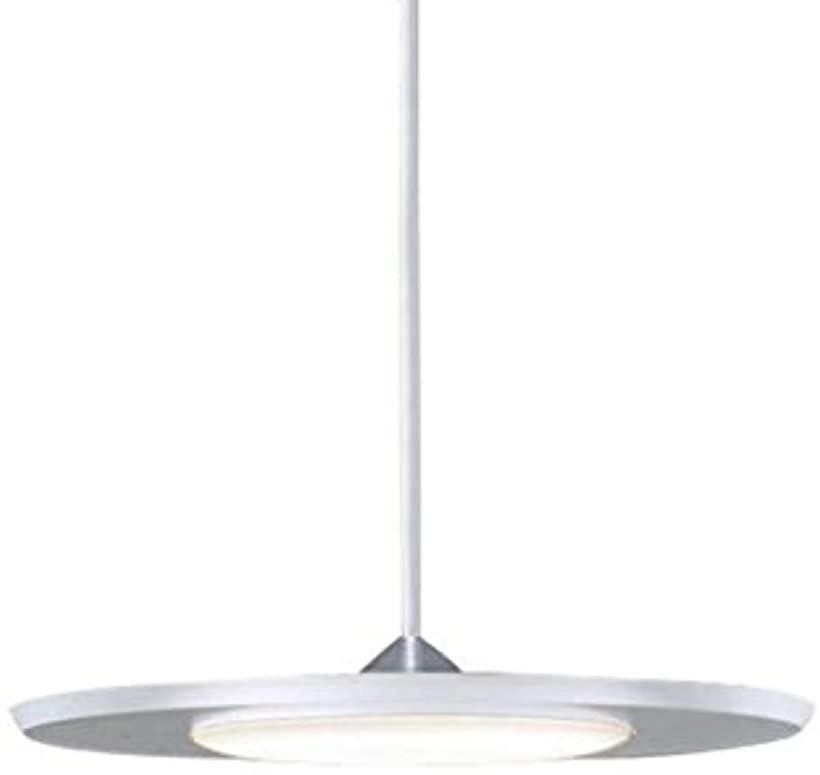 LED ペンダント 配線ダクト取付型 60形 温白色