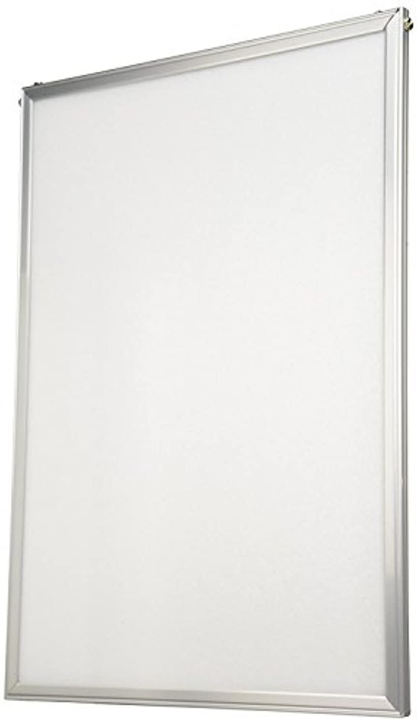 まとめ買いセットHAKUBA 額縁 アルミフレーム ニューファンシーパネル A3サイズ 差込みタイプ 10枚セット AMZFNFP10-A3(A3)