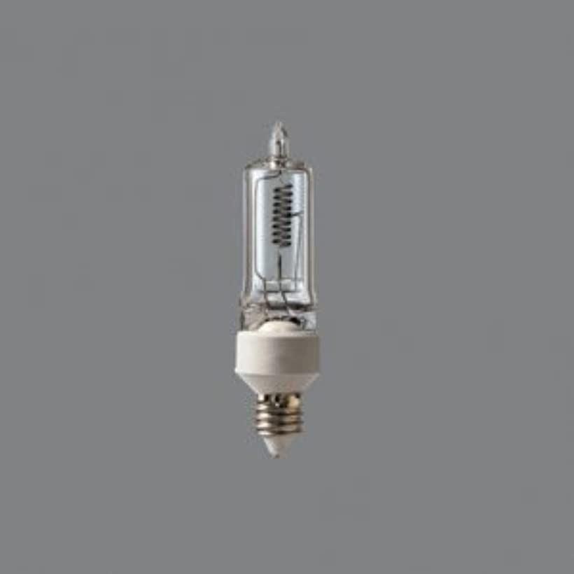 ケース販売 10個セット ミニハロゲン電球 110V 250W E11口金 JD110V250W・P/E_set