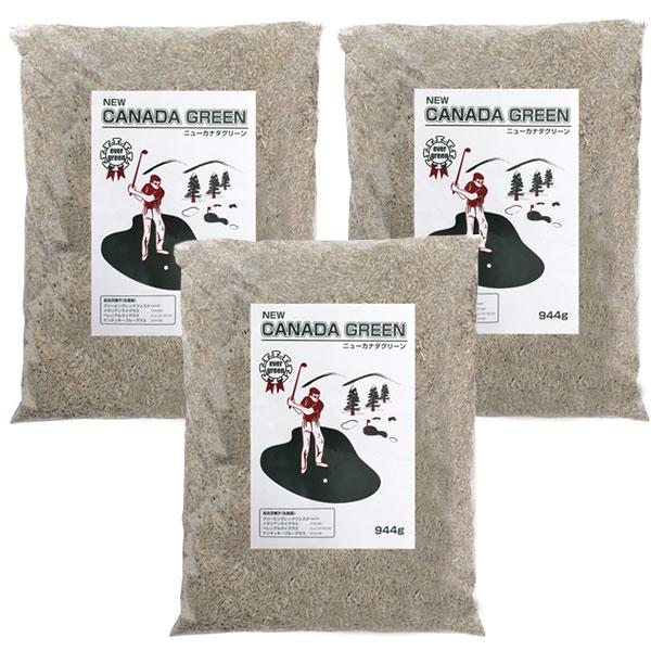 芝生の種 種まき ニューカナダグリーン NEW 送料無料 芝生の種 カナダグリーン 種まき ニューカナダグリーン NEW 3個セット
