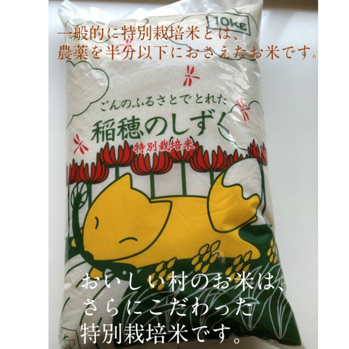 白米 玄米 新米 あいちのかおり 愛知県産 特別栽培米 OUTLET SALE ゆめまつり 予約販売 1キロ