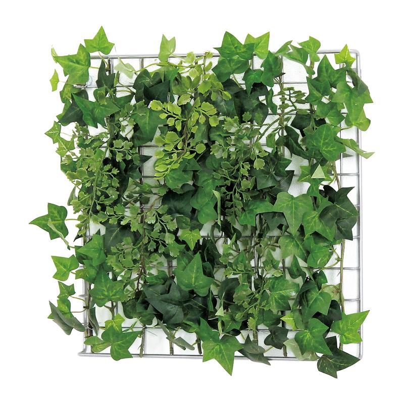 ベルク インテリアパネル グリーンパネル 連接グリーン 緑 GR1041 30角 インテリア 室内 壁 連接グリーン インテリア おしゃれ 送料無料 緑 植物, 森田:3ce158e1 --- partyofdoom.com