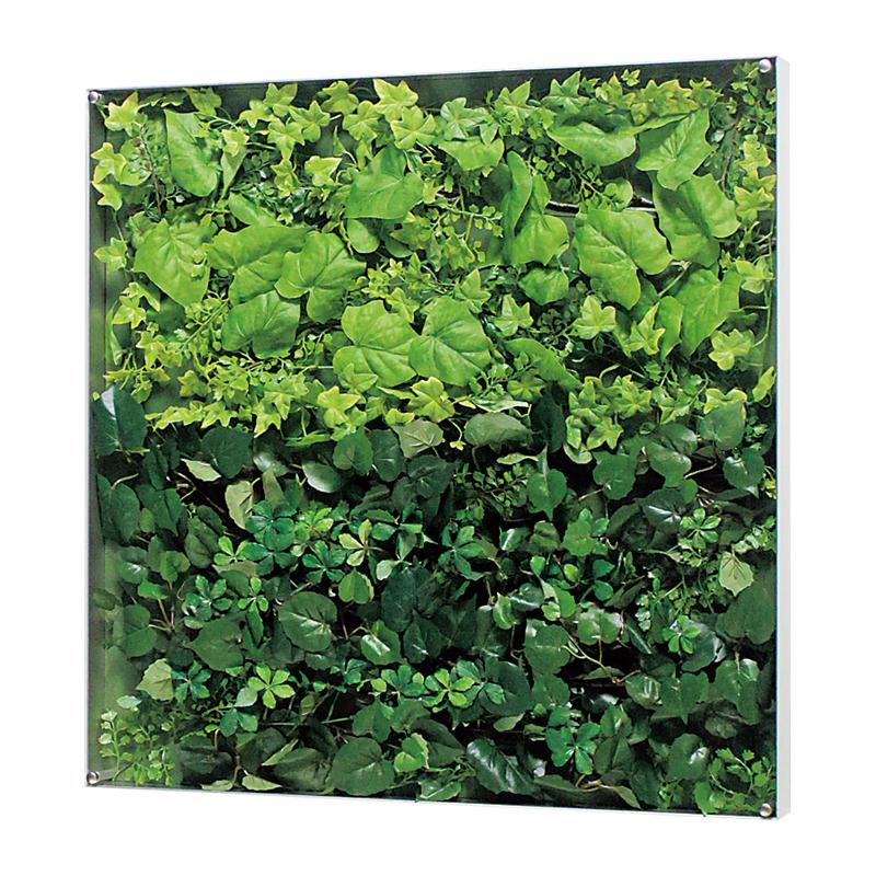 ベルク インテリアデコ ウォールグリーン GR3569 インテリアパネル 室内 送料無料 植物 注目ブランド 壁 緑 アイテム勢ぞろい おしゃれ インテリア