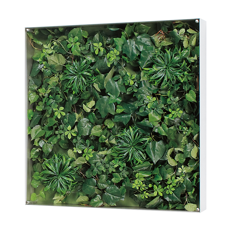 ベルク インテリアパネル インテリアデコ ウォールグリーン GR3113 室内 壁 インテリア おしゃれ 送料無料 緑 植物