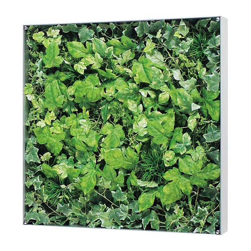 ベルク インテリアパネル インテリアデコ ウォールグリーン GR3114 室内 壁 インテリア おしゃれ 送料無料 緑 植物