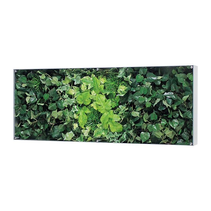 ベルク インテリアパネル インテリアデコ ウォールグリーン GR3119 室内 壁 インテリア おしゃれ 送料無料 緑 植物