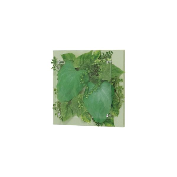 ベルク インテリアパネル インテリアデコ グリーン GR3412 室内 壁 インテリア おしゃれ 送料無料 緑 植物