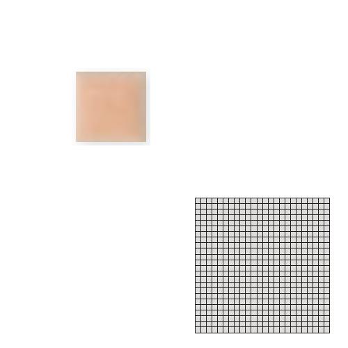 送料無料 Tchic タイル建材 屋内床壁用 インテリアタイル モザイクアート10mm 10角 単色 10-B24