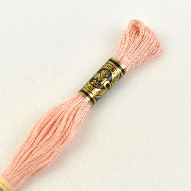モデル着用 注目アイテム \期間限定10%OFF 刺しゅう材料 ストア DMC 刺繍糸 _5a_ H 色番353 25番