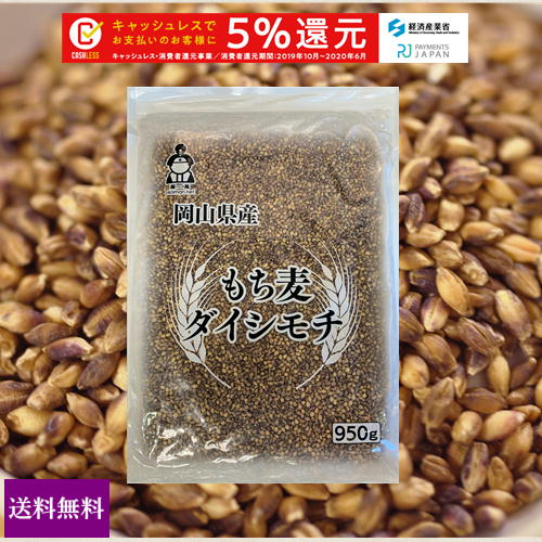 新麦 国産 もち麦 ダイシモチ 950g チャック付 令和元年岡山県産