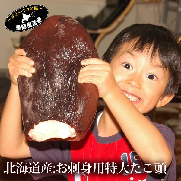 『大ダコ:ボイル頭1.2kg~1.4kg前後』【ギフト】【楽のし_ギフト】母の日 父の日 ギフトメッセージカード