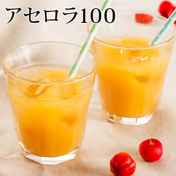 【送料無料】アセロラ100 24本セット|アセロラ|ジュース|ドリンク[飲み物>ソフトドリンク>アセロラジュース]