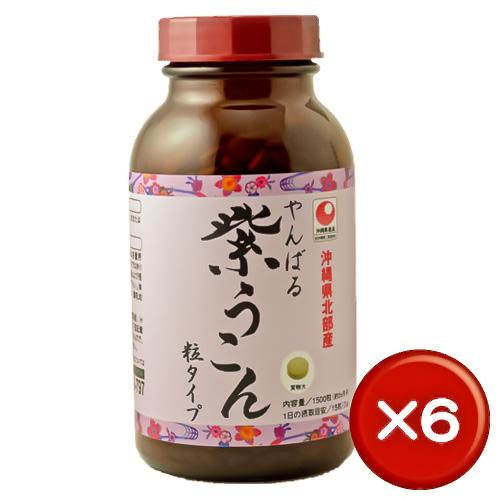 【送料無料】やんばる紫ウコン粒1500粒(容器) 6個セットクルクミン・サポニン・ミネラル|胃腸|[健康食品>サプリメント>ウコン]