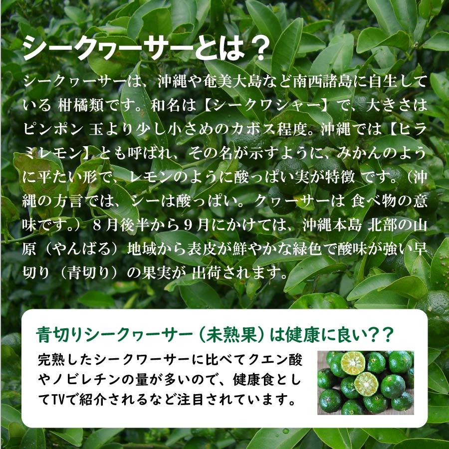 化学肥料農薬不使用山原シークヮーサー720ml×5本セット