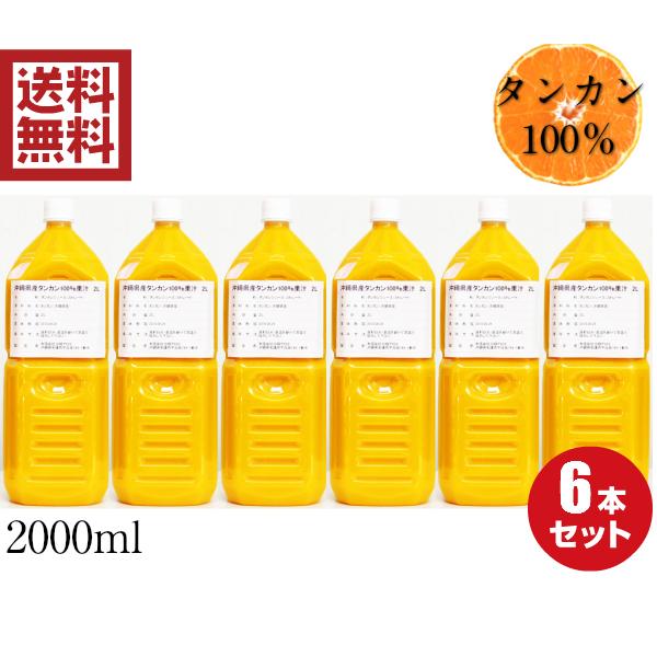 沖縄県産たんかん果汁100%2L 6本セット 業務用サイズ