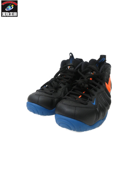 NIKE AIR FORM POSITE PRO(26.5)【中古】