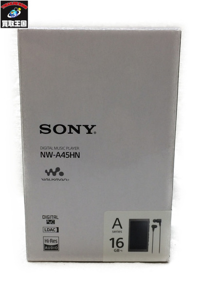 SONY WALKMAN NW-A45HN【中古】