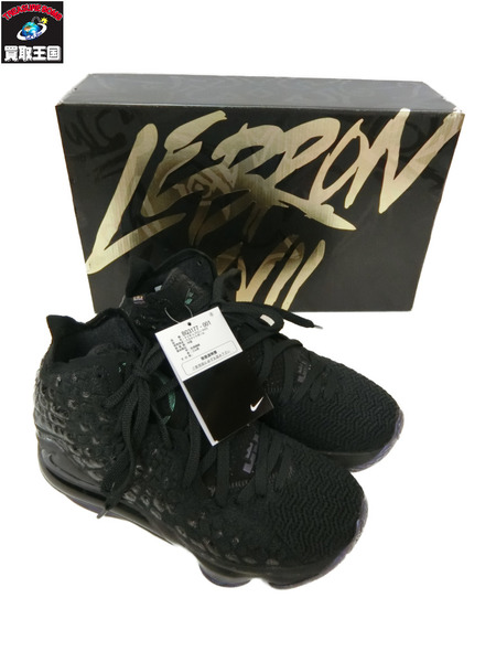 NIKE LEBRON17 Currency Black 25cm【中古】