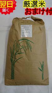 【30年産 新米】静岡県森町 堀内農場特別栽培米(減農薬7割減、化学肥料9割減)コシヒカリ★玄米30kg(精米無料)送料無料※北海道は別途送料\500沖縄一部離島は\1500が掛かります。