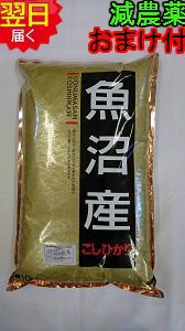 【令和元年産】新潟県魚沼産コシヒカリ(特別栽培米、減農薬米)☆白米5kg送料無料※北海道は別途送料\500沖縄一部離島は\1500が掛かります。