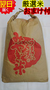 【30年産 新米】宮城県登米産こがねもち米★玄米30kg(精米無料☆選択してください↓)宮城米推奨店登録店※北海道は別途送料\500沖縄一部離島は\1500いただきます