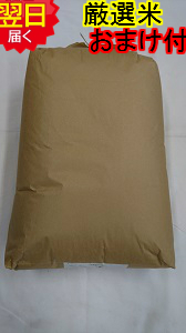 【30年産 新米】静岡県産 厳選 ミルキークイーン玄米30kg(もしくは精米無料)送料無料※北海道は別途送料\500沖縄一部離島は\1500が掛かります