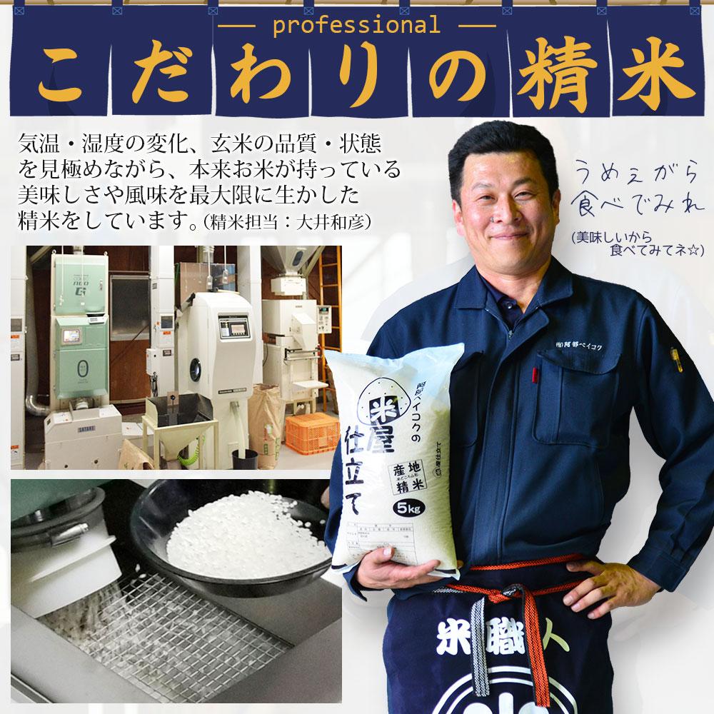 米10kg  家計応援まんぷく米 5kg×2袋 安い お米 10キロ コメ 白米