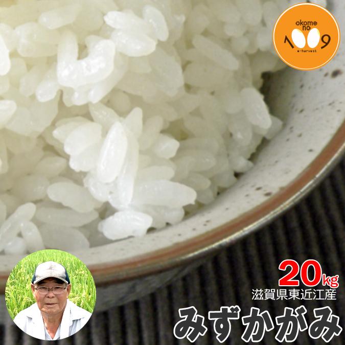 新米 滋賀県長浜産 みずかがみ 玄米 20kg 産地直送 アグリ39 令和元年産 環境こだわり米(減農薬) 送料無料
