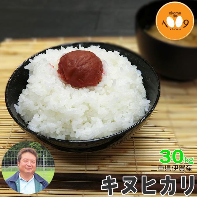 新米 三重県伊賀産 キヌヒカリ 玄米 30kg ヒラキファーム 30年産 送料無料