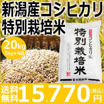 【米】新潟産コシヒカリ特別栽培米20kg(5kg×4袋)【30年産】【送料無料】新潟から産地直送、精米仕立をお届けします。