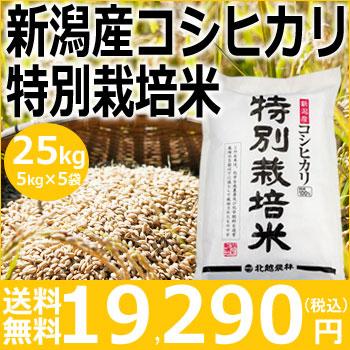 【米】新潟産コシヒカリ特別栽培米25kg(5kg×5袋)【30年産】【送料無料】新潟から産地直送、精米仕立をお届けします。
