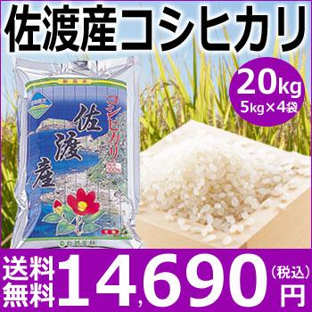 【米】佐渡産コシヒカリ20kg(5kg×4袋)【30年産新米】【送料無料】新潟から産地直送こしひかり【白米】