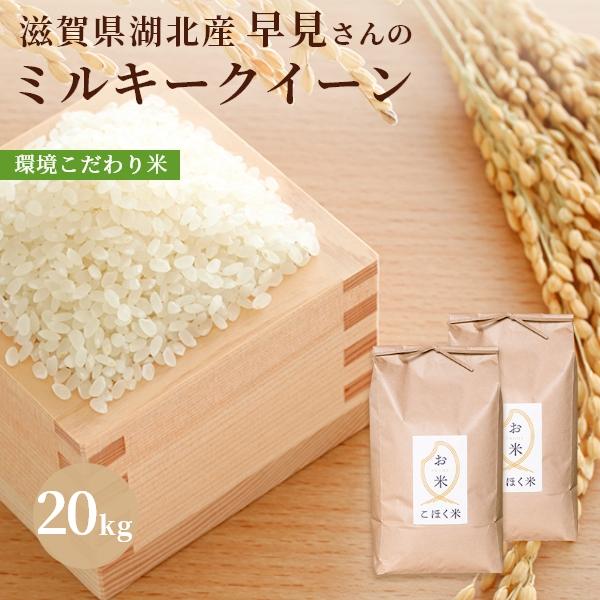 在庫処分 近江の湖北米 早見さんのミルキークイーン 新米 令和3年 滋賀県湖北産早見さんのミルキークイーン 白米 20kg 特別栽培米 環境こだわり米 新色 玄米