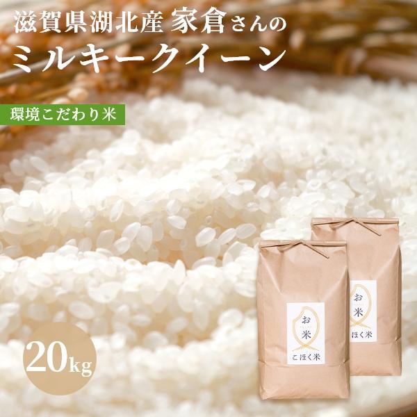 近江の湖北米 家倉さんのミルキークイーン 新米 お見舞い 令和3年 滋賀県湖北産家倉さんのミルキークイーン 白米 大幅にプライスダウン 20kg 玄米 環境こだわり米 特別栽培米