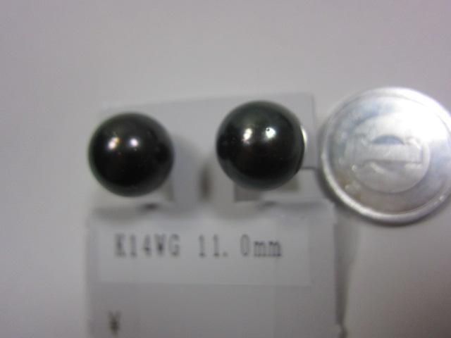 K14WG金具、本真珠、ピアス【中古】