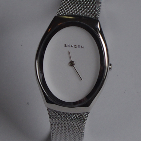 SKAGEN スカーゲン SKW2297 メッシュバンド 腕時計 Women's 女性用 スリムウォッチ