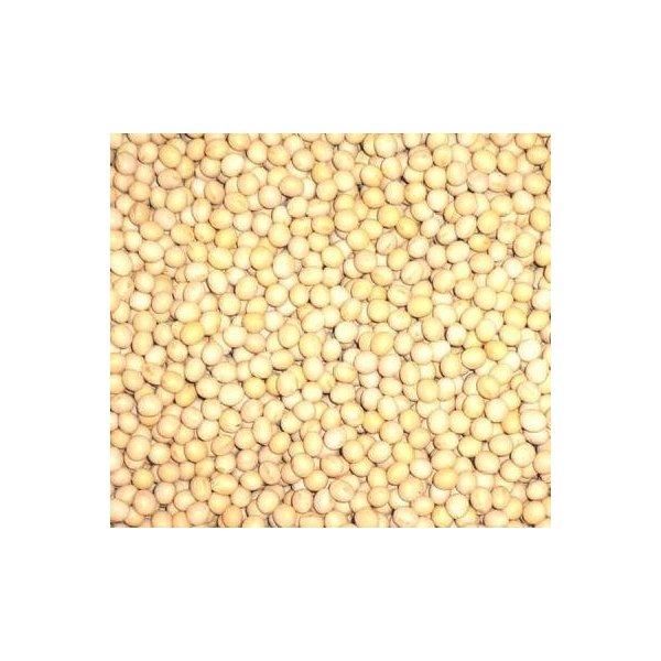 お料理などにどうぞ 北海道産 激安特価品 白大豆 生 1kg 送料無料 みのや ストアー 生大豆 グルメ 無添加 乾燥豆