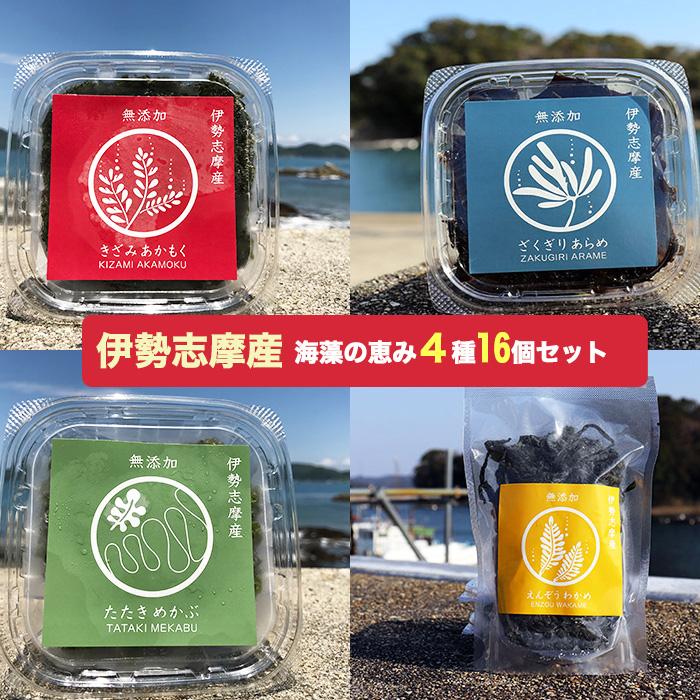 伊勢志摩産 無添加 海藻セット(あかもく、あらめ、めかぶ、塩蔵わかめ)各4パック 計16パック【アカモク】